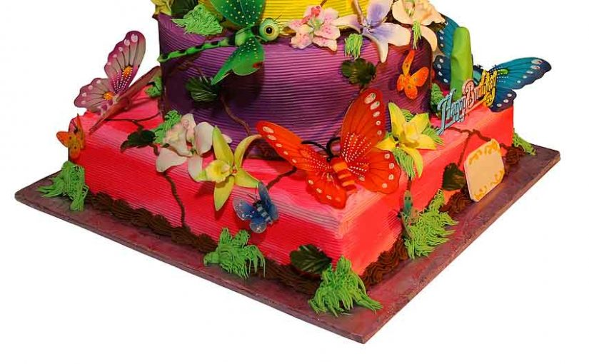 birthday cake using butterfly decorations and other props